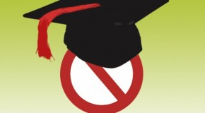 Fake credentials: Official cruises along on forged degree